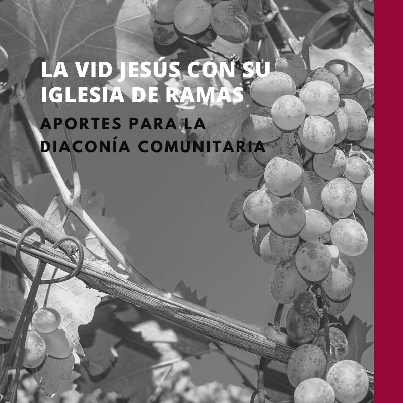 La vid Jesús con su iglesia de ramas: aportes para la diaconía comunitaria